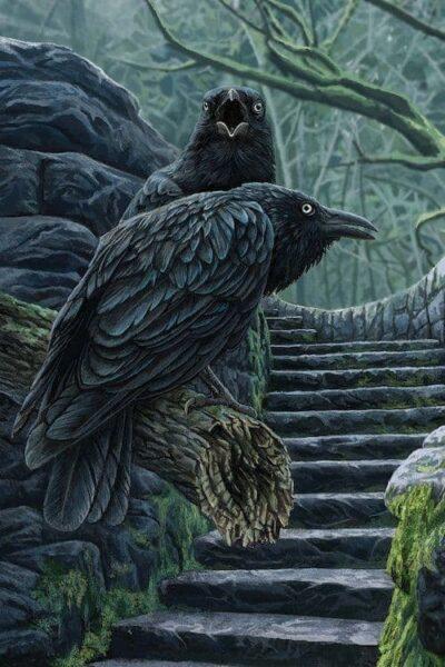 расклад таро черный ворон